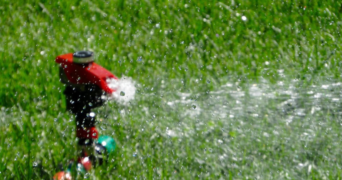 How Often Should You Water Your Lawn
